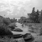 MARAIS POITEVIN  1955